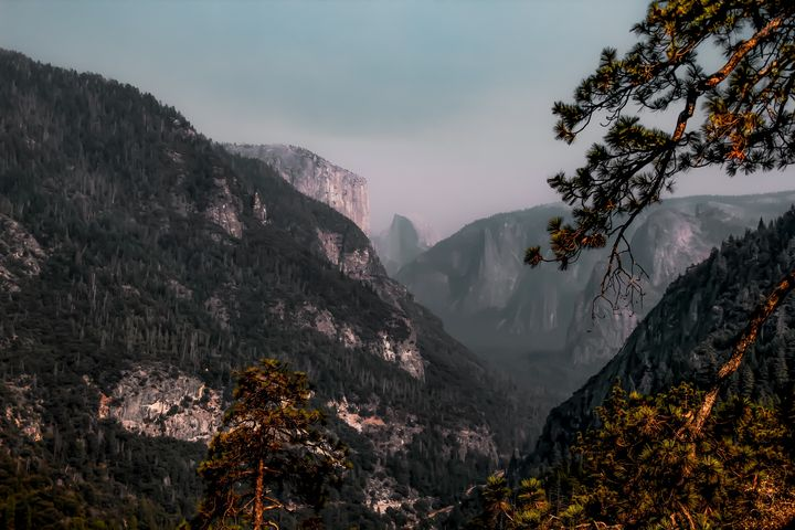 mountain in the forest at Yosemite - TimmyLA
