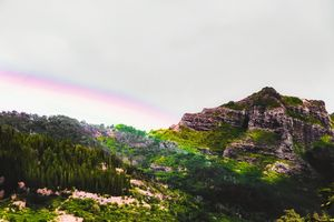 rainbow over the green mountain