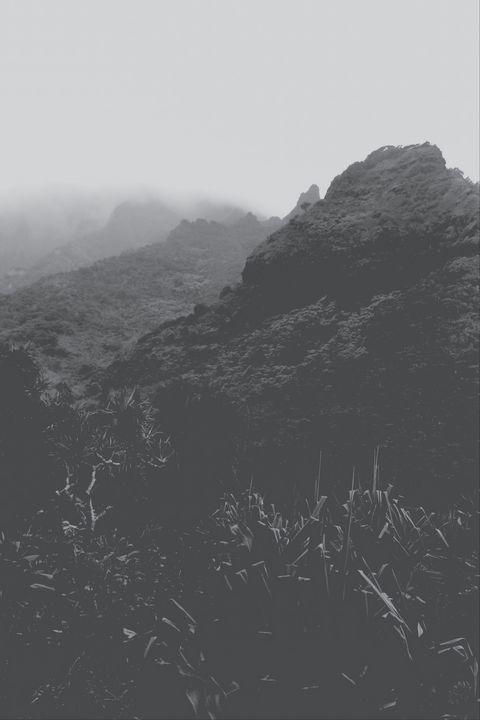 Kalalau trail, Kauai, Hawaii, USA - TimmyLA
