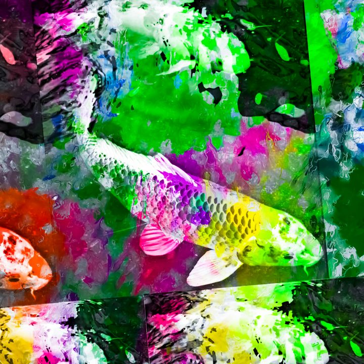 koi fish with colorful abstract - TimmyLA