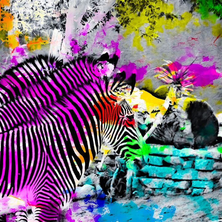 zebra in nature - TimmyLA