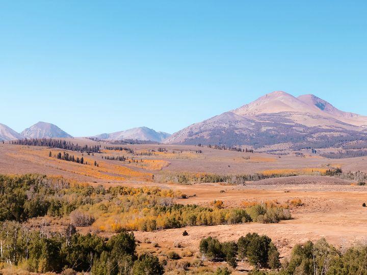 autumn tree with mountain view - TimmyLA