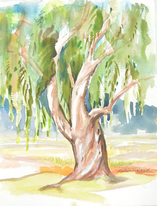 Willow Tree - Ruth Stephen's Watercolor