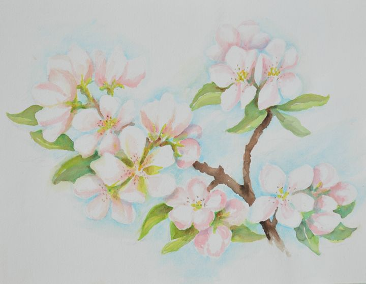 Dogwood - Ruth Stephen's Watercolor