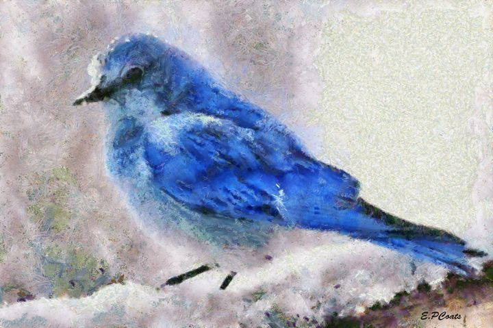 Blue Bird in Snow - Elizabeth P. Coats Fine Art