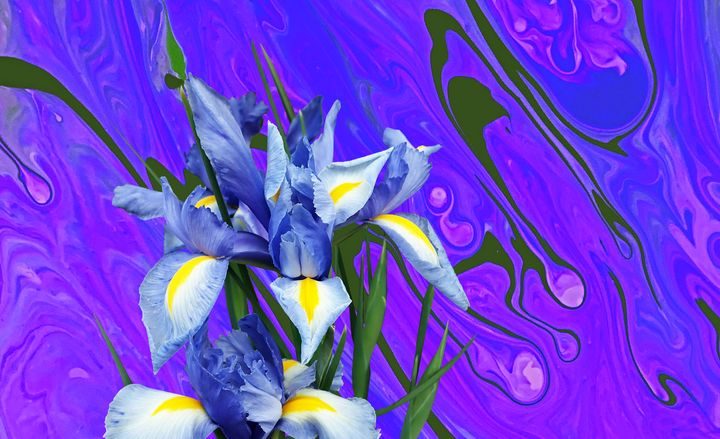 Blue Orchid Abstract - Karen Colville Nature Art