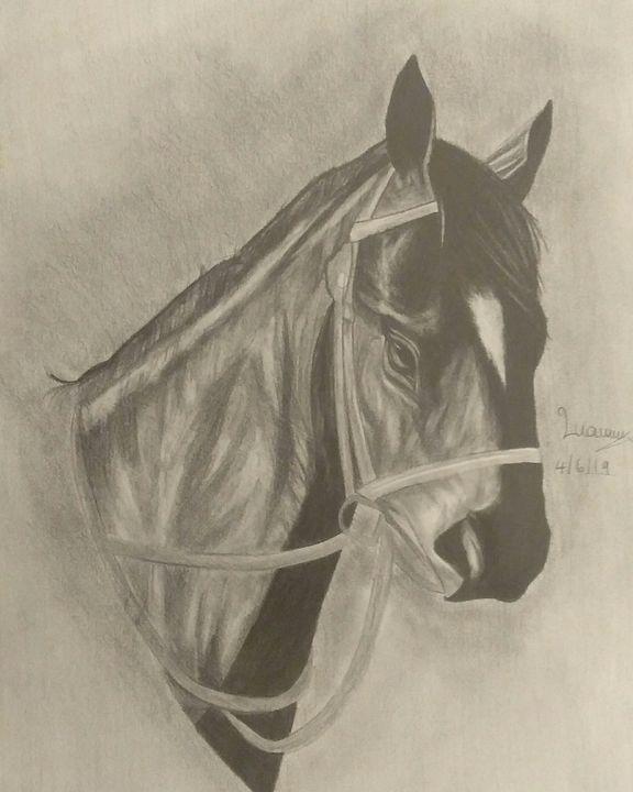 Black horse drawing - 19teen art