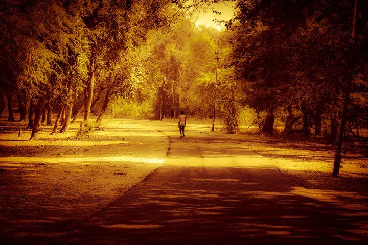 Nature walk - Rajat Shukla Photography
