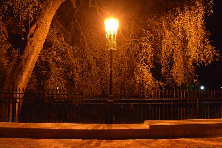 Street lamp - Rajat Shukla Photography