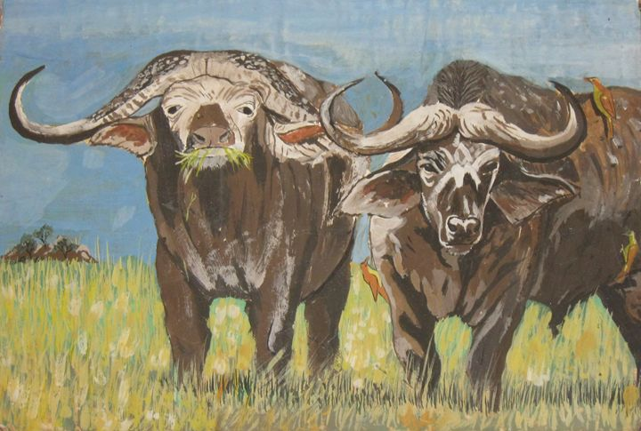 Buffalo Duo - Clinton