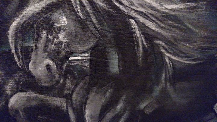 Midnight mares - Circle @ Arts
