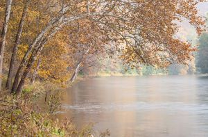 Clarion River in Rain and Sun