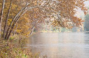 Clarion River in Rain and Sun (OP)