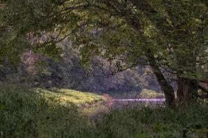 Clarion River near Blyson Run (WC)