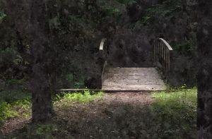 Footbridge (WC)