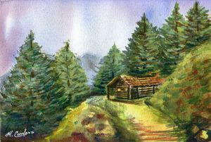Mountain Top Cabin