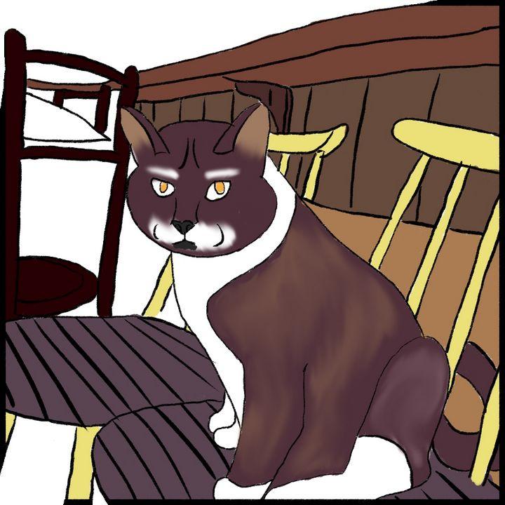 Cat - O.L ❤️