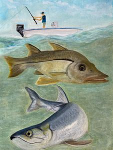 Fishing for snook and Tarpon