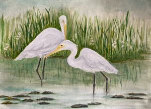 Egrets in a swamp
