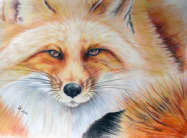 Fox - Svetla Ivanova Art