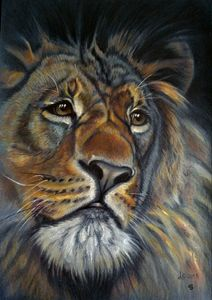 Lion ( the original is sold )
