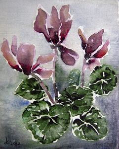 Cyclamen - Svetla Ivanova Art