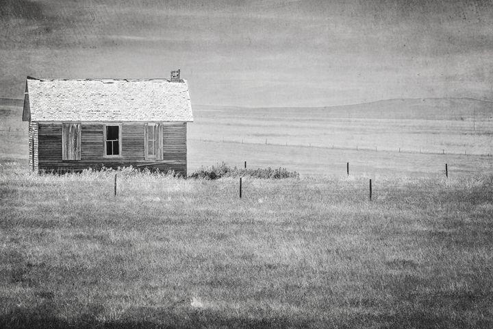 Solitude - Lilu & Bear Fine Art Photography