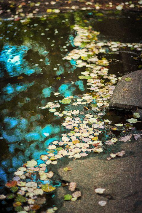Tranquility - Lilu & Bear Fine Art Photography