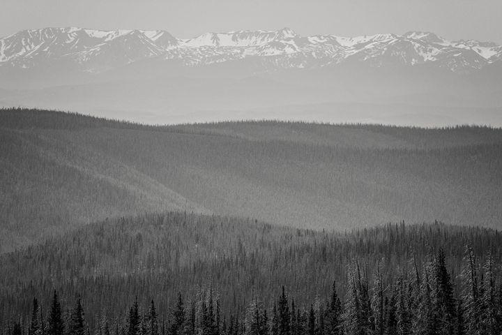 Ultimate View - Lilu & Bear Fine Art Photography