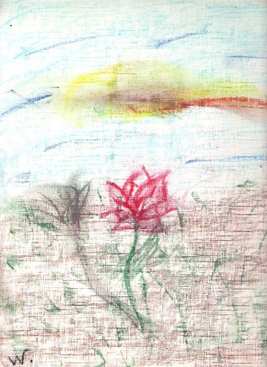 Rose - Willow