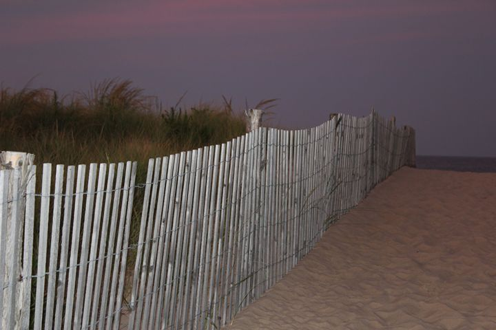 Fence on the Dunes - Joyce Lapp