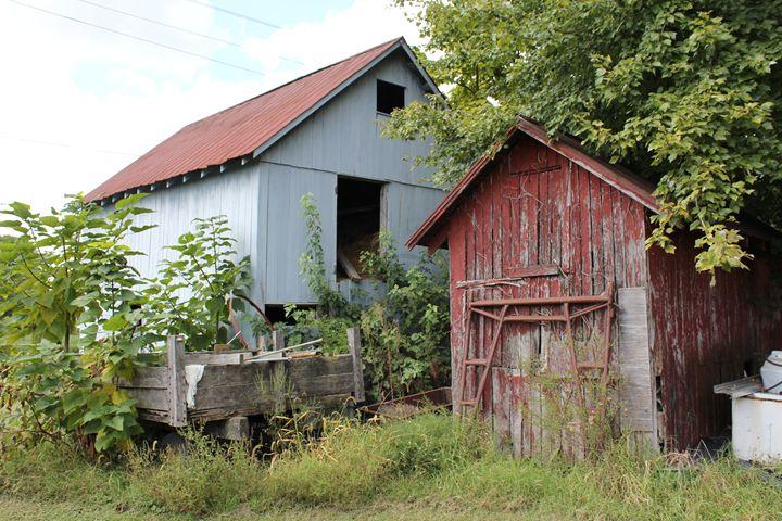 Old Delaware Barns - Joyce Lapp