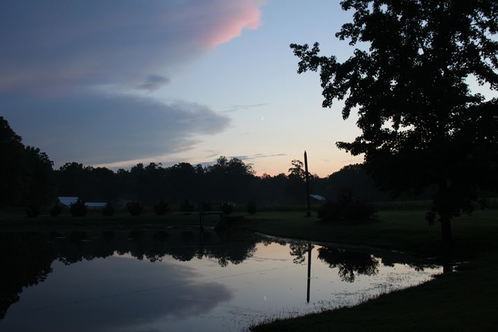 Quiet Pond - Joyce Lapp