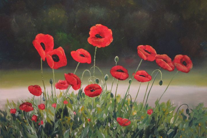Poppies - Joyce Lapp