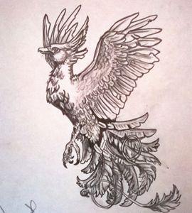 phenox - firebird paintings