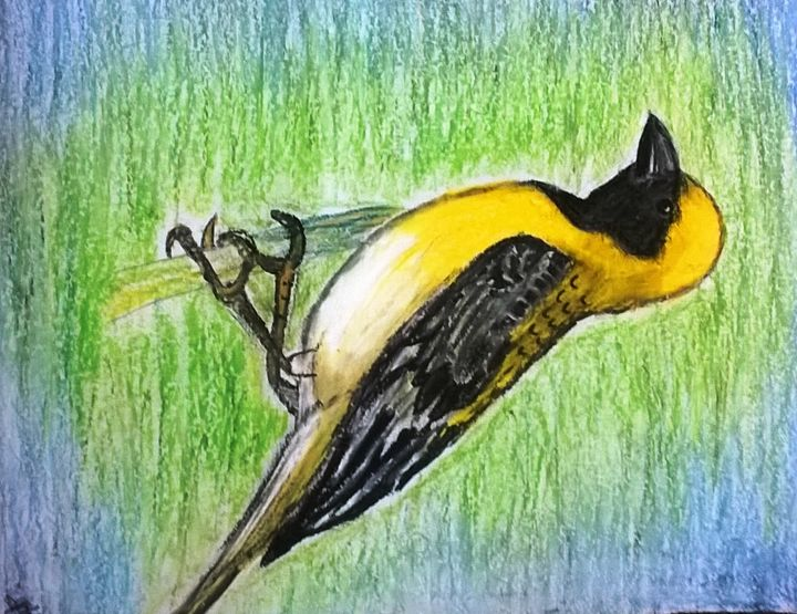 Baya weaver - firebird paintings