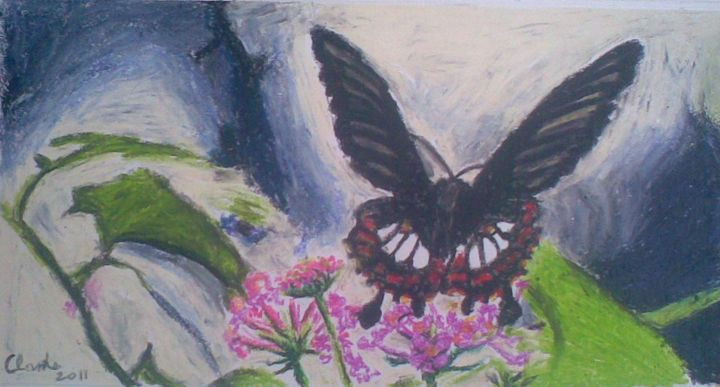 Butterfly - Azariah Clarke