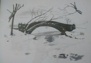 Winter in NewYork