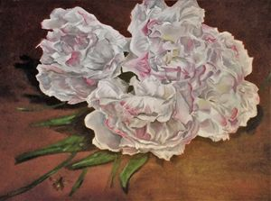 peonies and bee floral still life
