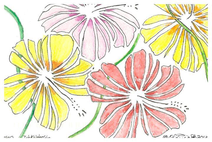 Hibiscus - Olaina Silva