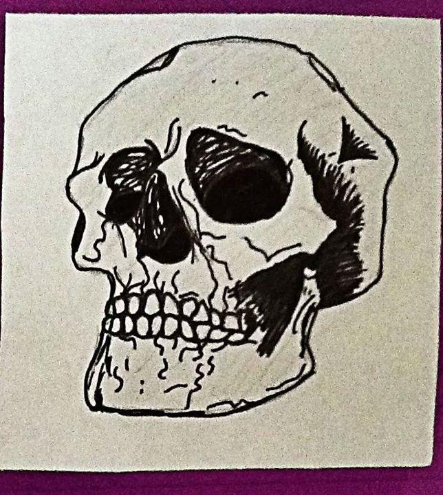skull - Shelina