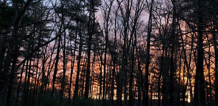 Winter, late-day light - James M. Piehl