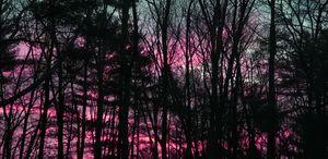 Sunrise in an Alternate Universe ii