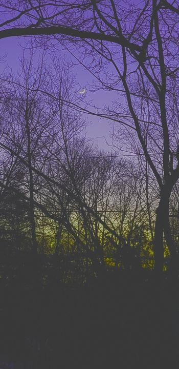 Imaginary Night image - James M. Piehl