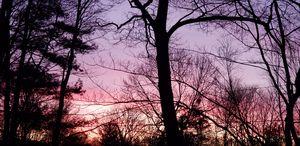 Christmas sunset, 2019