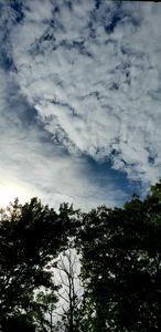 Alot of Sky