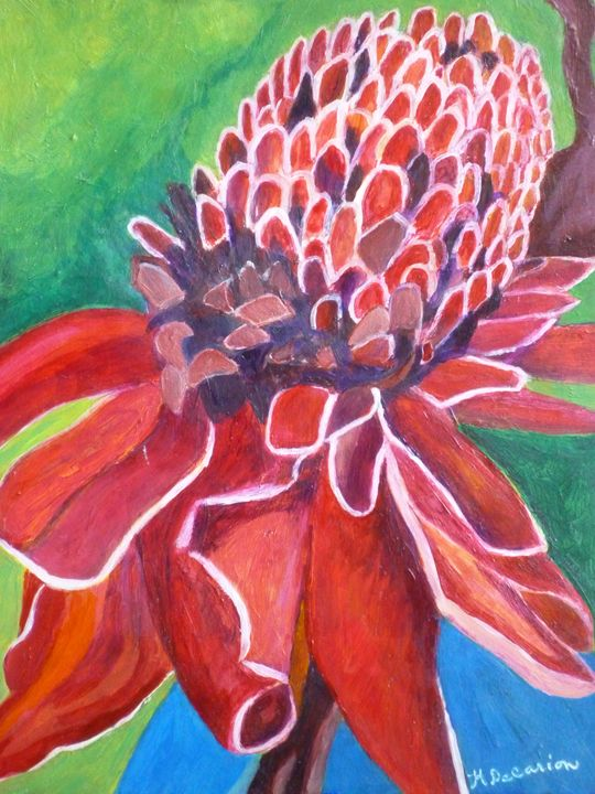 Red Torch Ginger Plant,  Maui - Hally DeCarion's Paintings