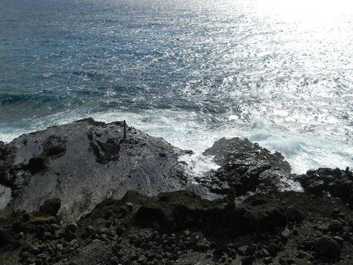 Beach shore - paradise