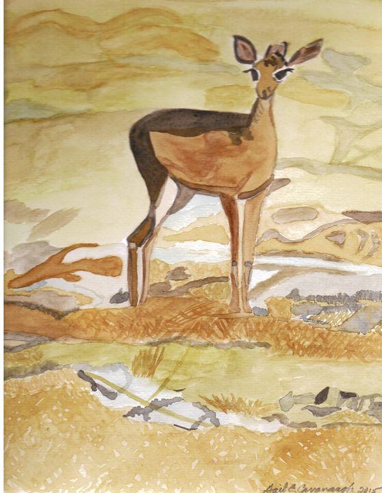 Dik-Dik (African Deer) - Gail Cavanaugh Art