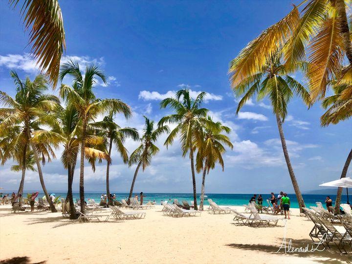 Palm Beach - Alenaid L